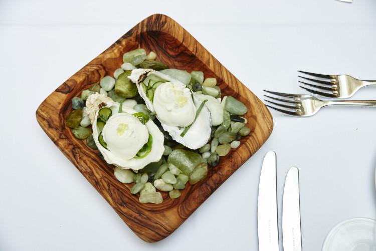 Tian vegetarische Auster