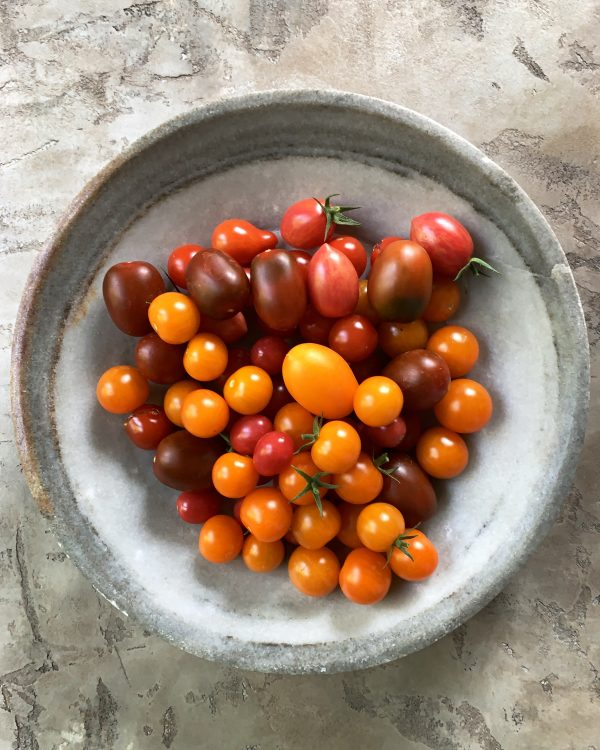 tomaten-rot-gelb-orange-alte-sorten-heirlooms