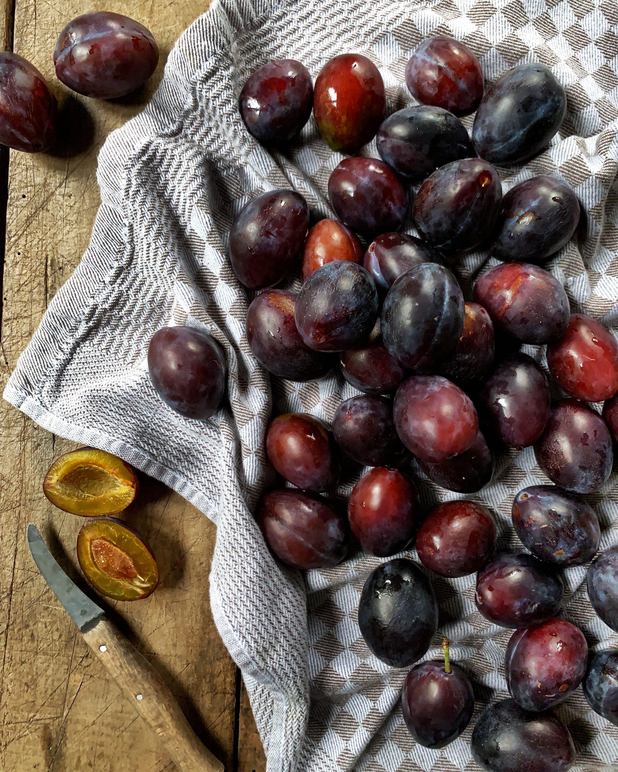 zwetschgen-zwetschken-pflaumen-zwetschen-prunus-domestica-herbstfrucht